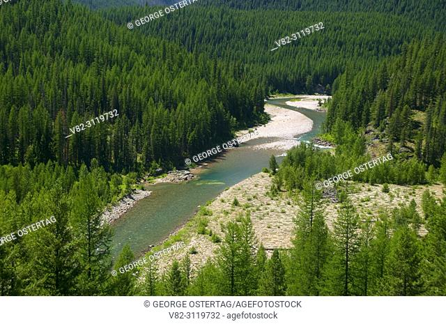 Middle Fork Flathead Wild and Scenic River, Great Bear Wilderness, Flathead National Forest, Montana