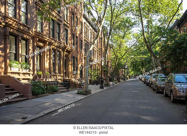 Tree-lined street with attractive brownstone buildings in affluent residential neighborhood in Brooklyn Heights, New York