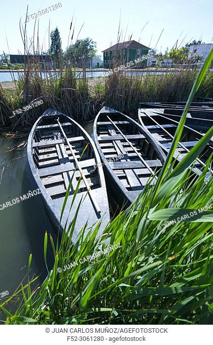 Traditional boat, Casa de Fusta Channels, The Ebre Delta Natural Park, Terres de l'Ebre, Tarragona, Catalonia, Spain