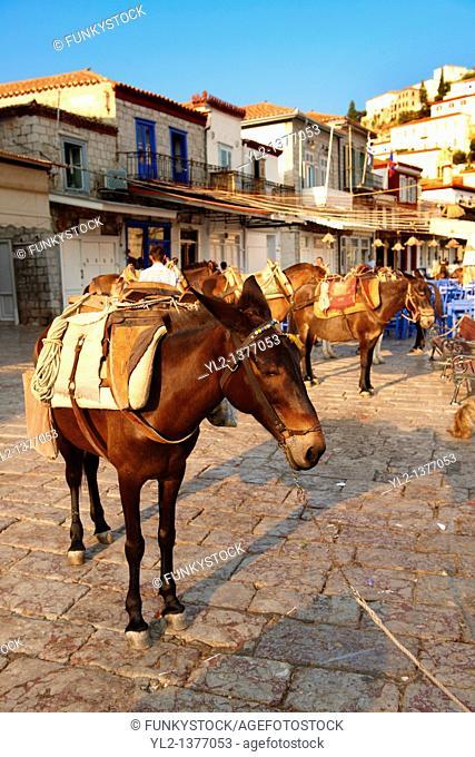 Pack Ponies on Hydra, Greek Saronic Islands