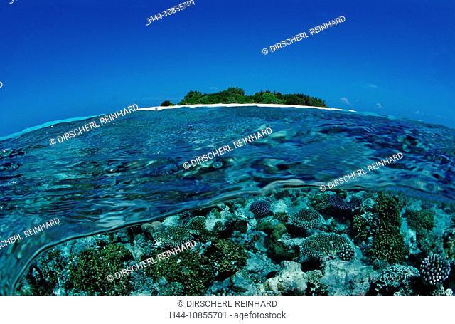 10855701, Maldives, Indian Ocean, Meemu Atoll, isl