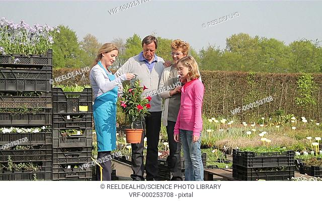 Garden centre employee showing grandparents and granddaughter plants in a garden centre