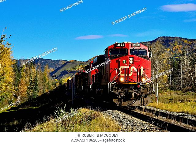 A close up image of a Canadian National freight train hauling a load through the autumn colored landscape of rural Alberta, Canada
