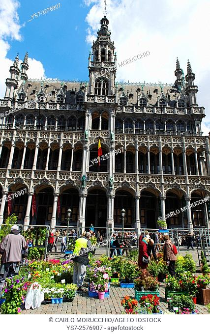 Maison du Roi, the Grand Place, Brussels, Belgium, Europe
