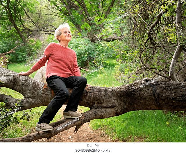 Senior woman sitting on tree trunk, Sequoia National Park, California, US
