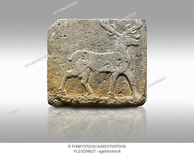Picture & image of Hittite monumental relief sculpted orthostat stone panel from Water Gate Basalt, Karkamis, (Kargamis), Carchemish (Karkemish)