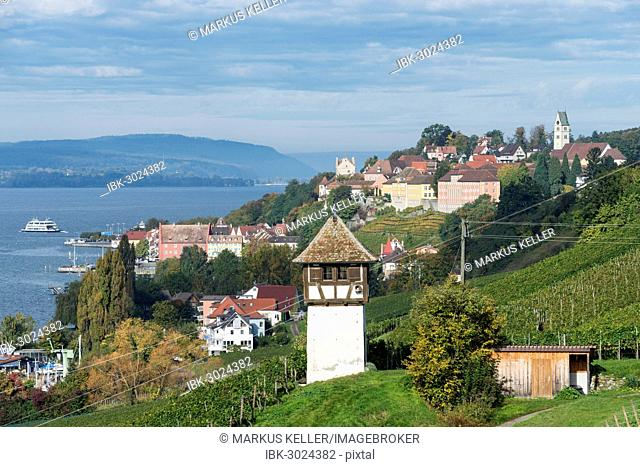 Historic Rebgut Haltnau vineyard on Lake Constance, with the town of Meersburg am Bodensee on the right, Langenargen, Baden-Württemberg, Germany
