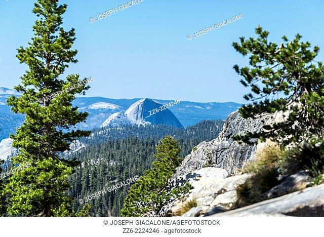 View of Half Dome from the May Lake hiking trail. Yosemite National Park, California, United States