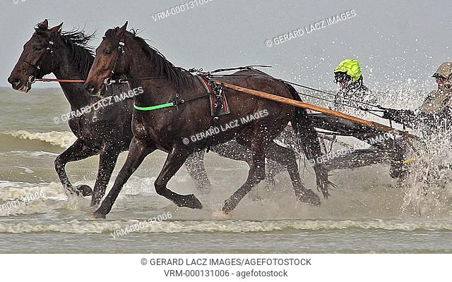 Horse racing, French Trotter, harness racing during Training on the Beach, Cabourg in Normandy, France