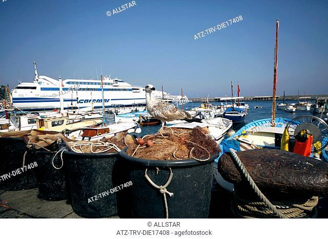 SEAGULL & FISHING BOATS; MARINA GRANDE, ISLAND OF CAPRI, ITALY; 17/09/2011