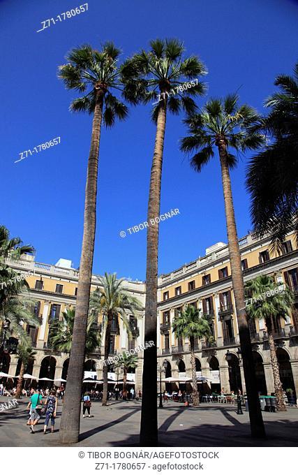 Spain, Catalonia, Barcelona, Placa Reial