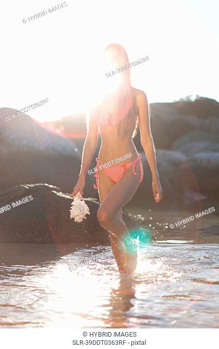 Woman carrying seashell on beach