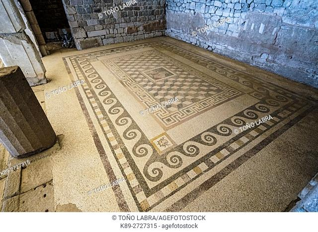 Pergamon Gymnasium Mosaics. Ancient Greece. Asia Minor. Turkey