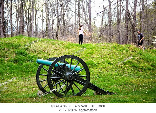 Old fashion brown wheels with green canon in the middle of an old war field