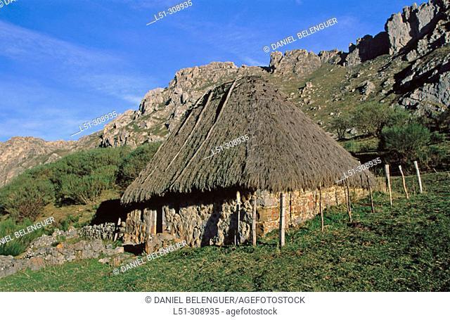 Teito (typical dwelling). Braña de Murias Llongas. Parque Natural de Somiedo. Asturias, Spain
