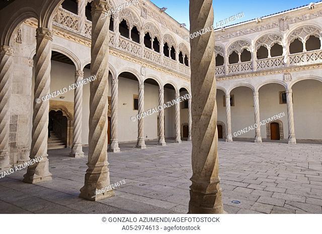 Central Courtyard. Sculpture National Museum Valladolid. Valladolid. Castilla Leon. Spain.