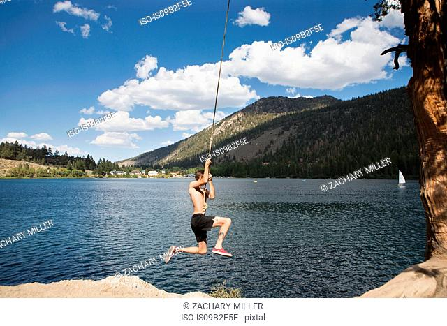 Young man swinging on rope swing over lake, Mammoth Lakes, California, USA