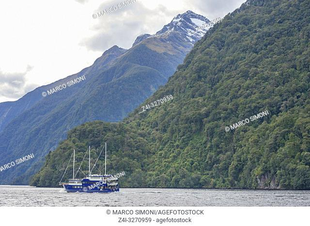 Cruise boat on Doubtful Sound, Fiordland National Park, Doubtful Sound, South Island, Southland, New Zealand, Australasia