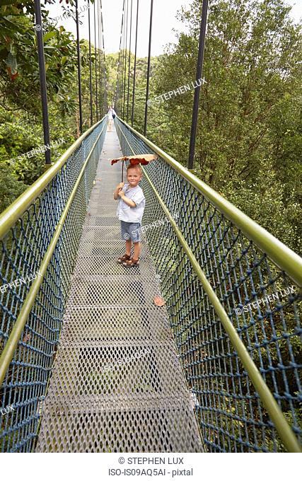 Boy standing on long footbridge, Botanical Gardens, Singapore