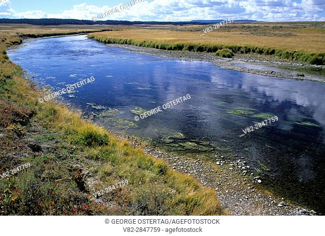 Pelican Creek in Pelican Valley, Yellowstone National Park, Wyoming