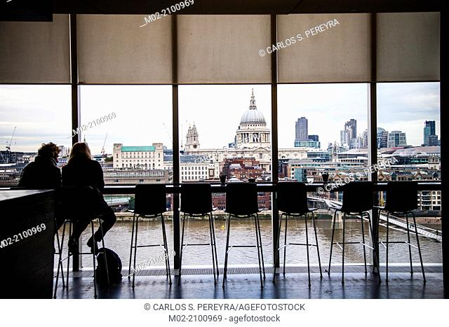 View of St. Paul's Cathedral from Tate Gallery, London, UK