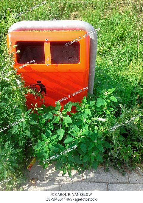 Trash bin by sidewalk, surrounded with plants
