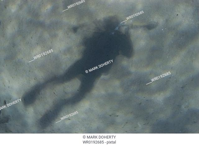 The Shadow of a diver on the seabed