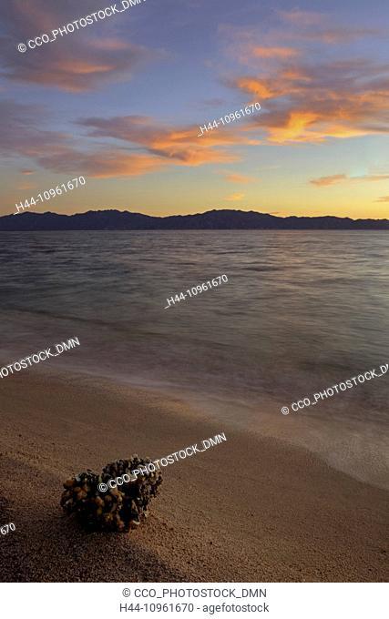 Baja, Baja del Sur, El Sargento, Gulf of California Island, Sea of Cortez, Mexico, Central America, island, sea, ocean, beach, coast, coastline, water, sand