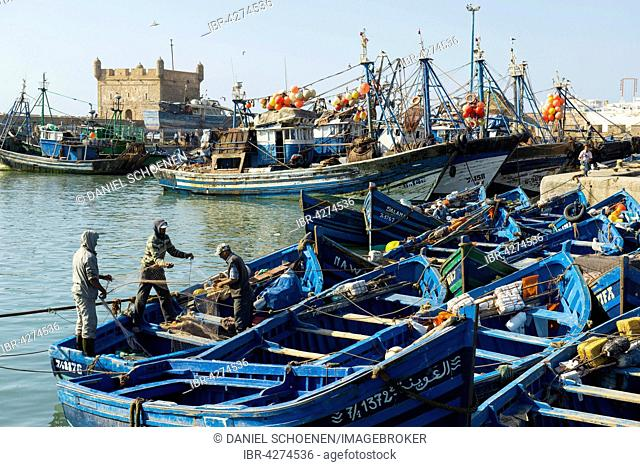 Blue fishing boats in the harbour, Essaouira, Morocco