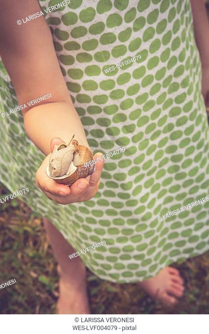 Little girl's hand holding vineyard snail