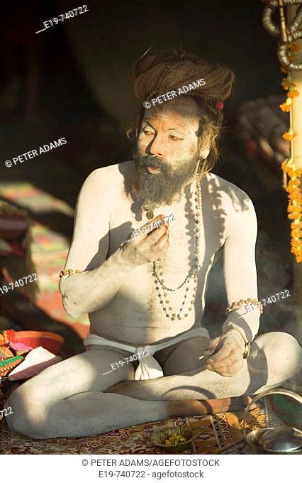Sadhu at Kumba Mela festival, Allahabad, Uttar Pradesh, India