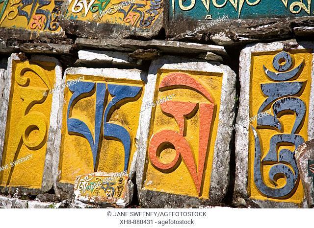 India, Sikkim, Tashiding, Tashiding Gompa, Tibetian inscriptions on Mani wall