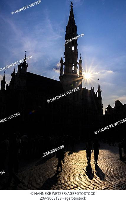 Silhouet of the Grand Place, Brussels, Belgium, Europe