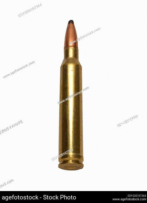300 Win Magnum shell