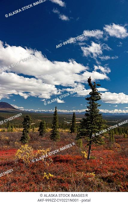 Scenic view of colorful tundra and distant view of the Alaska Range from the Denali Highway, Interior Alaska, Autumn