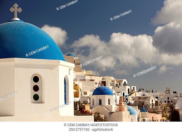 Blue domed churches in Oia village, Santorini, Cyclades Islands, Greek Islands, Greece, Europe