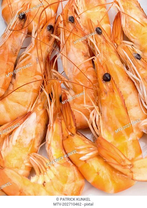 Close-up of fresh prawns