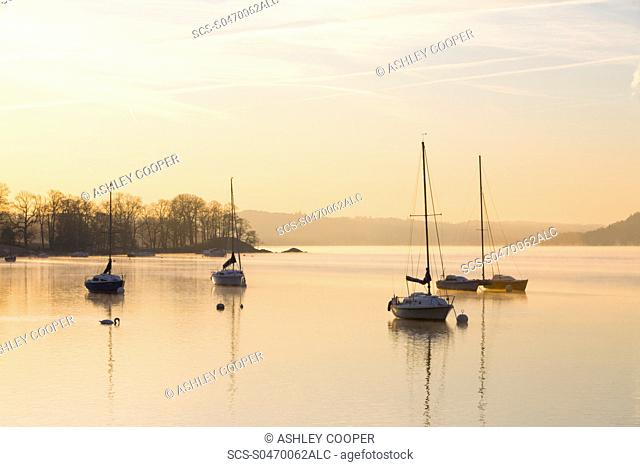 Sailing boats on Lake Windermere in the Lake District UK at dawn