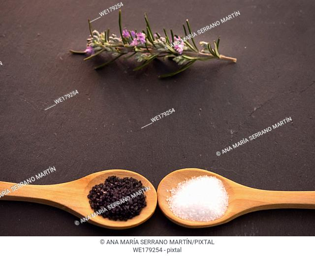 Wooden spoons with marine common salt and black hawaii salt and a rosemary twig on a slate plate