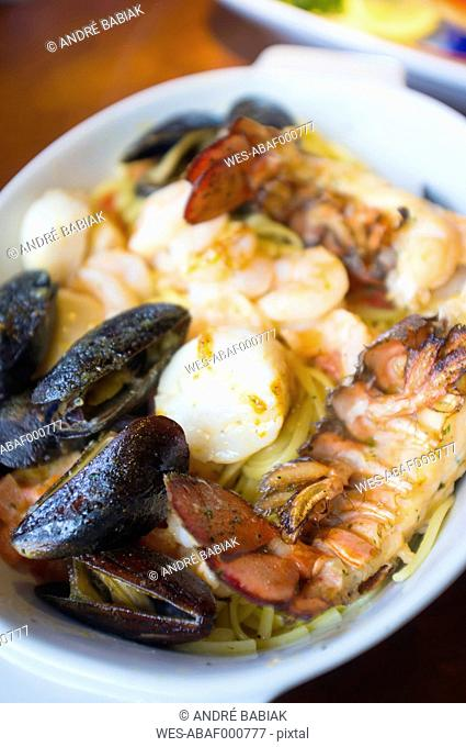 Seafood dish with lobster, mussels, scallops and pasta on plate
