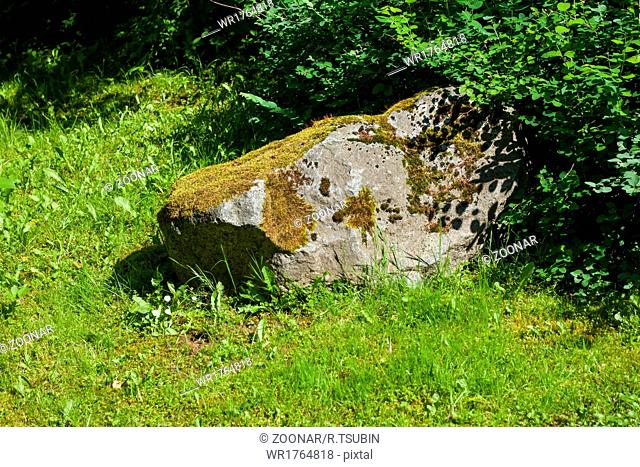 Large rock in the park