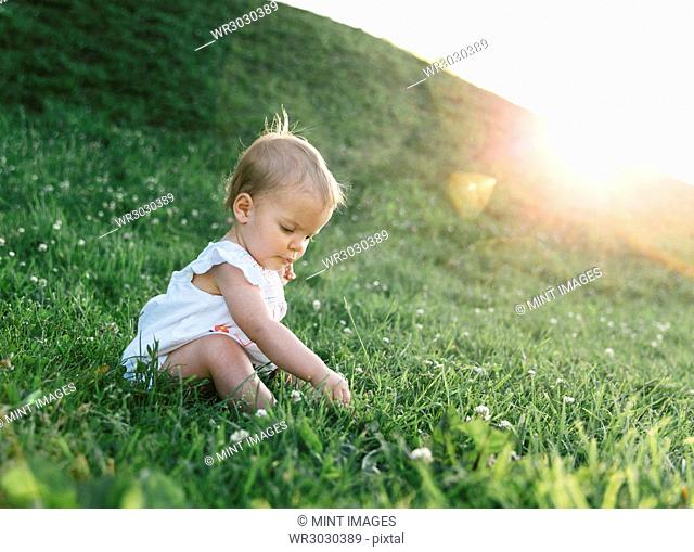 A baby girl sitting on a grassy hill playing with plants