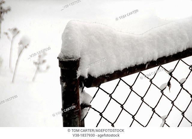 Snow piled high on a fence