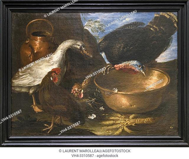 A goose, a cock and a turkey by Jose Antonio Benedito Soares de Faria e Barros called O Morgado de Setubal (1752-1809), Oil on canvas Portuguese School (1790)