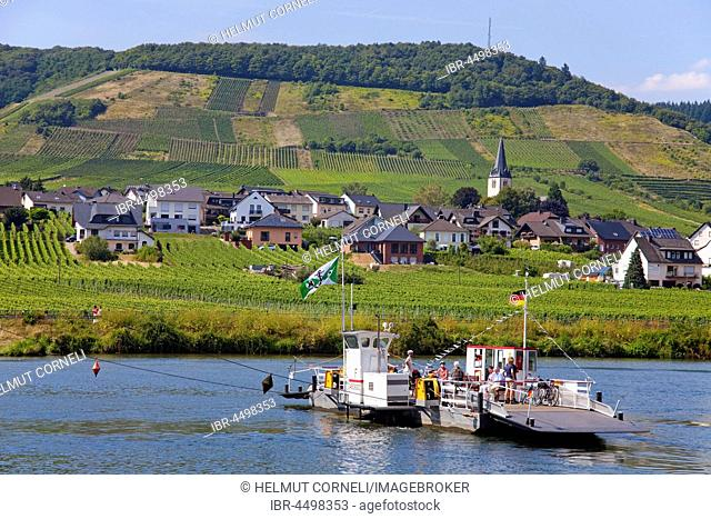 Mosel ferry in Beilstein on the Moselle, Rhineland-Palatinate, Germany