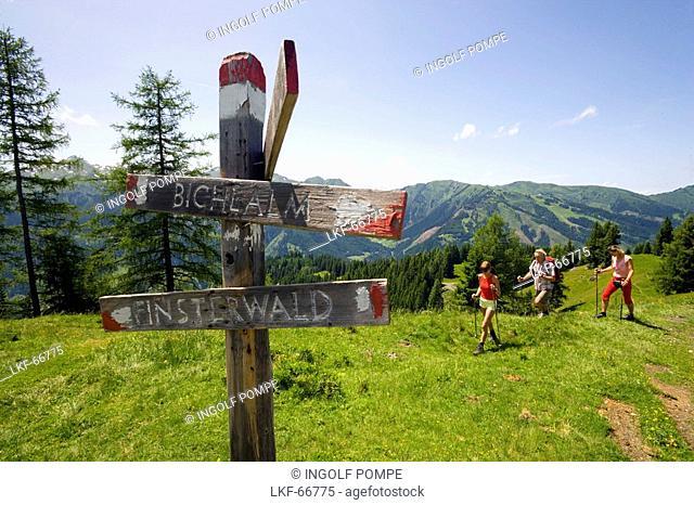 Three hikers arriving sign post, Bichlalm 1731 m, Grossarl Valley, Salzburg, Austria