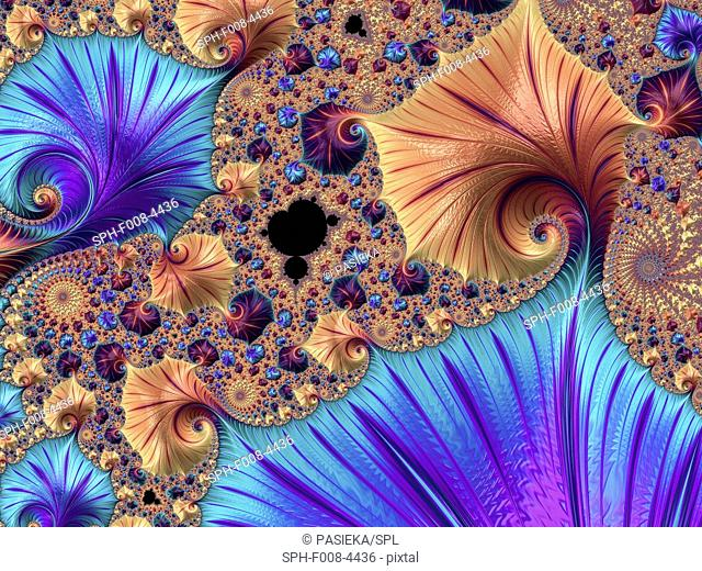 Mandelbrot fractal. Computer graphic showing a fractal image derived from the Mandelbrot Set. Fractals geometry is used to derive complex shapes as often occur...