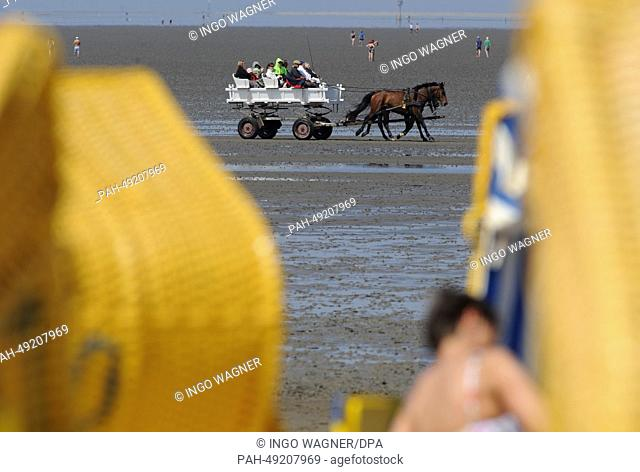 A mudflats carriage returns from North Sea island Neuwerk to the beach of Duhnen in Cuxhaven, Germany, 07 June 2014. The sunny weather attrackted thousands of...