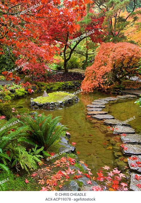 Japanese Garden in autumn at the Butchart Gardens, Victoria, Vancouver Island, British Columbia, Canada