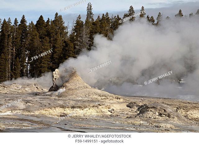 Giant Geyser, Winter, Yellowstone NP